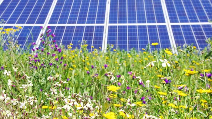 Hopedale-MA-Solar-Farm